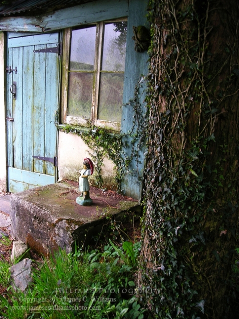 The lovely garden at Redgate Smithy B&B, St. Cleer, Cornwall. Shot in 2010.