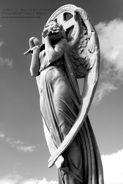 Angel de Santa Maria Black and White Digital Photograph, Shot December 12, 2016, final edit February 27, 2017 Cementerio Santa Maria Magdalena de Pazzis San Juan, Puerto Rico