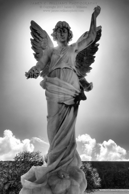 Angel In Sun Black and White Digital Photograph, Shot December 12, 2016, final edit June 8, 2017 Cementerio Santa Maria Magdalena de Pazzis San Juan, Puerto Rico