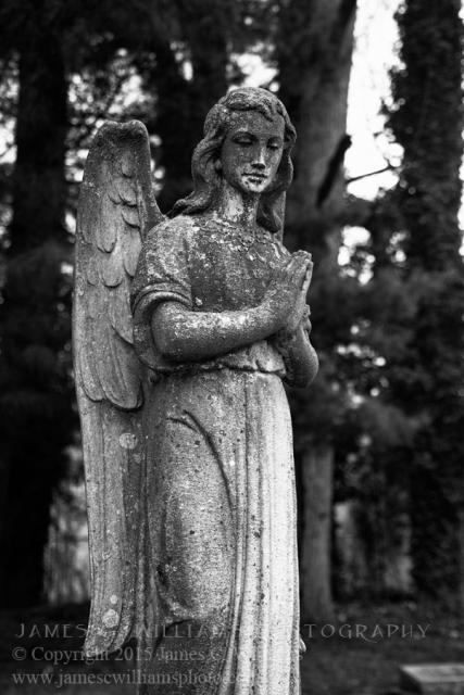 Angel_JCW6486-BW