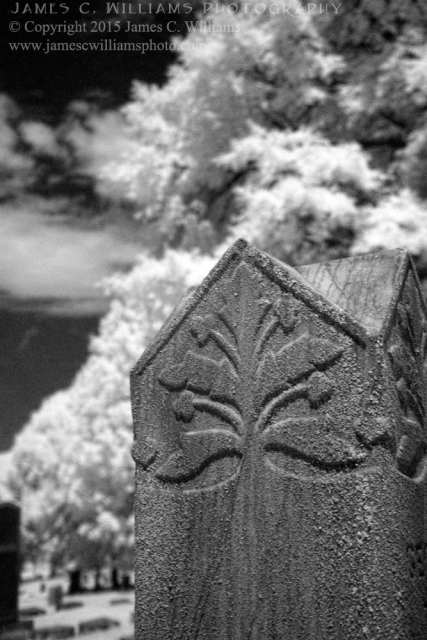 Foliage Design, Green Hill Cemetery, Greensboro, NCDigital Infrared Black and White PhotoJames C. Williams Photography© Copyright 2015 James C. Williamswww.jamescwilliamsphoto.com