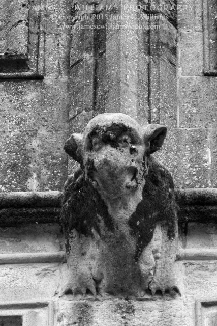 Wells Gargoyle, Wells, Somerset, England Digital Conversion Black and White Photograph; shot in 2010, final edit processed 2015 James C. Williams Photography © Copyright 2015 James C. Williams www.jamescwilliamsphoto.com