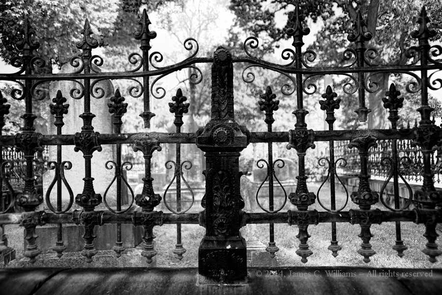 Gate and fence to unnamed family plot in unnamed cemetery. Shot, edited and copywritten 2014 by James C. Willams, all rights reserved.