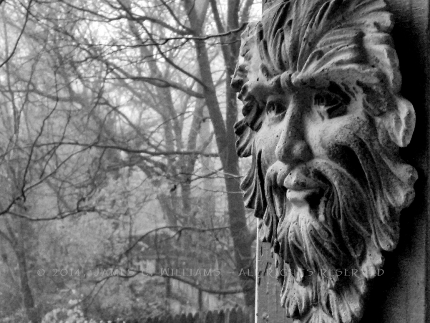 A Green Man face looking out from our porch on a foggy Christmas Eve morning.