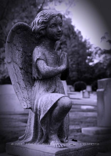 Kneeling-Angel-Selenium-Vign_SCO2126-5x7-731x1024