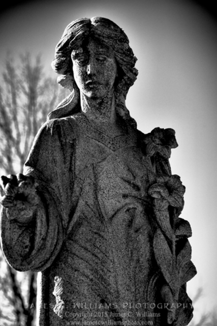 Shot in Maplewood Cemetery, Charlotte, NC; December 26, 2014.