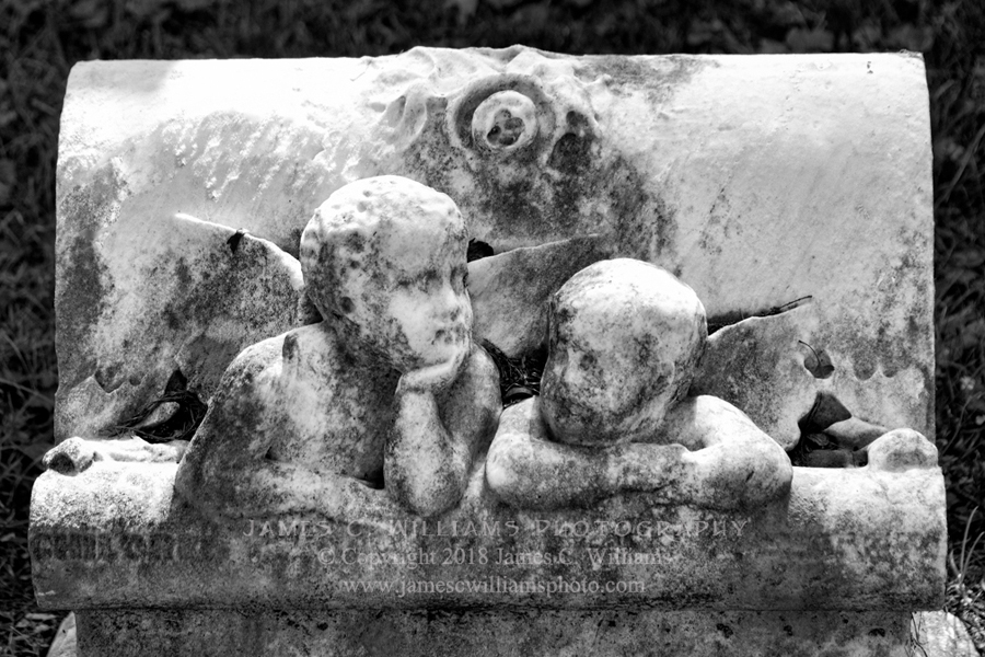 Little Angel #10Digital Photograph by James C. Williams