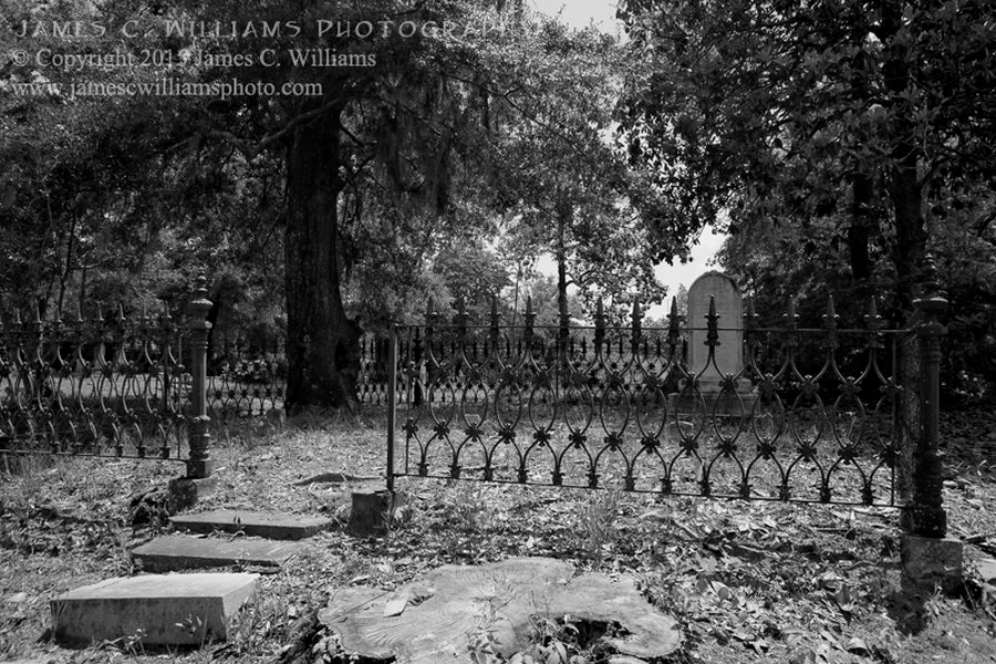 Ornate Iron FenceDigital Black and White Converted PhotoOakdale Cemetery, Wilmington, NC. By kind permission of Oakdale Cemetery Management.James C. Williams Photography© Copyright 2015 James C. Williamswww.jamescwilliamsphoto.com