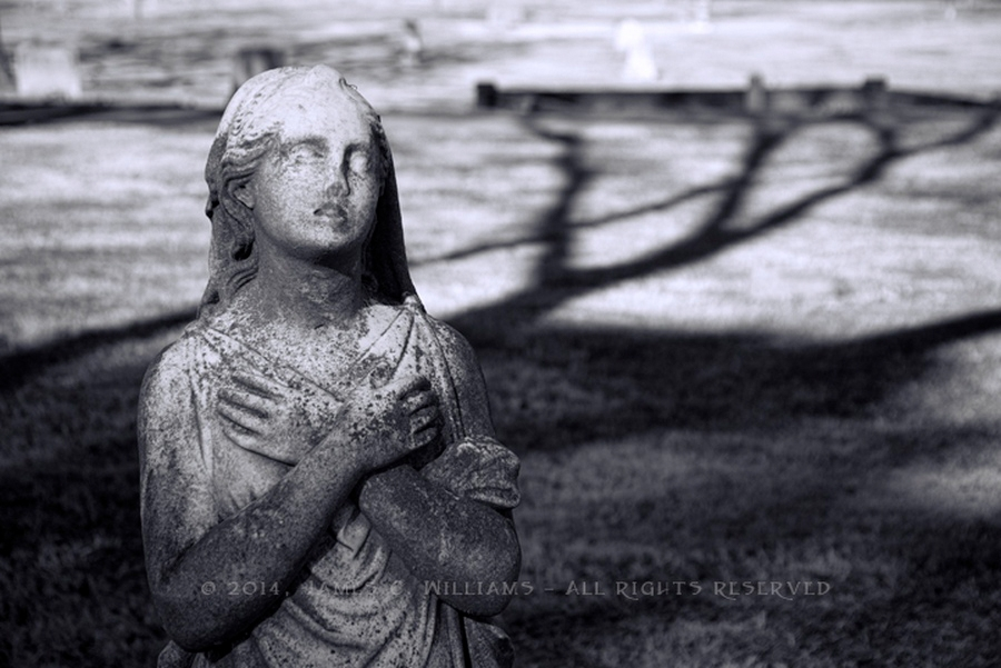Shot in Pinewood Cemetery, Charlotte, NC.