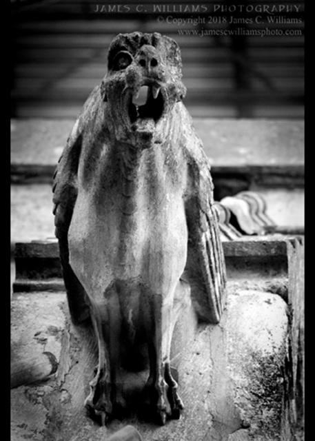 Woodchester-Beast_IMGP4195