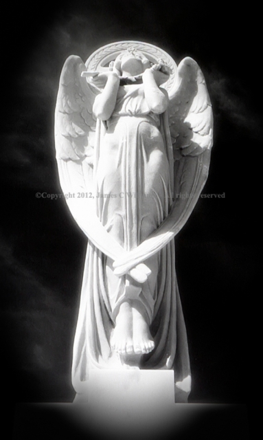 Angel Of Unity, Cementerio Santa María Magdalena de Pazzis, San Juan, Puerto RicoInfrared Film Photograph; shot in 2011, final edit processed 2012James C. Williams Photography© Copyright 2012 James C. Williamswww.jamescwilliamsphoto.com