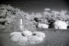 Infrared film photograph, shot in 2005, processed in 2007. This is a holy well or Mary Grotto near Kilmallock, Ireland.