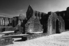 Majestic Ruin, Tintern AbbeyInfrared Film Photograph© Copyright 2009 James C. Williams